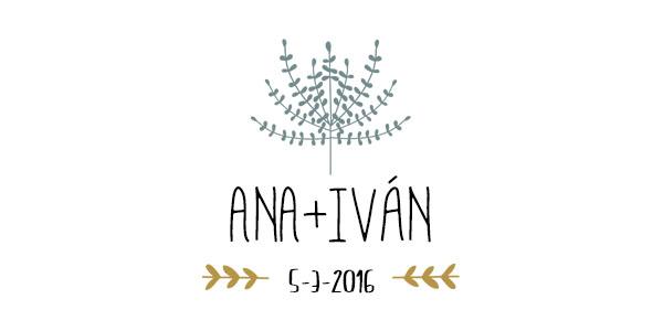 ANA+IVAN